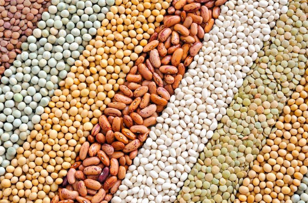 nixon-bulk-foods-lennox-head-web-design-robert-mullineux